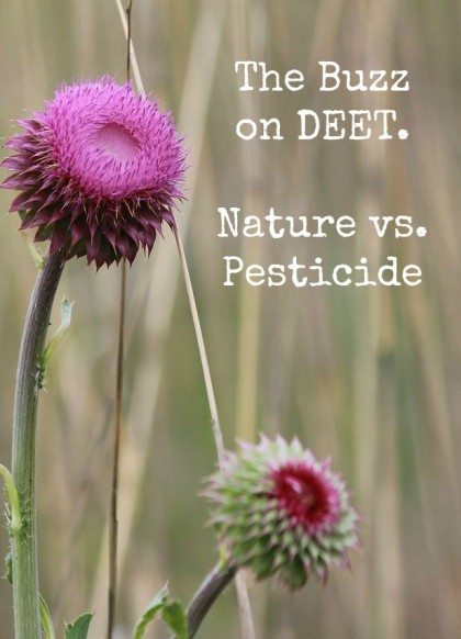 The Buzz on DEET. Nature vs. Pesticide